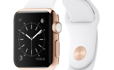 Apple Watch Edition interactive guide