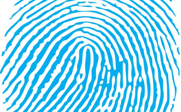 Scanners can be fooled by lab-created fingerprints