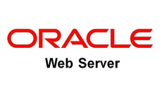 A pair of security bugs in Oracle iPlanet Web Server could result in data leak, phishing